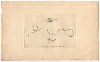 1792年 Shaw & Nodder Naturalist's Miscellany No.121 ハリガネムシ科 ハリガネムシ属 ハリガネムシ COMMON GORDIUS