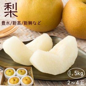 梨3〜5玉入り(約1.5kg)(発送期間:8月下旬〜9月)