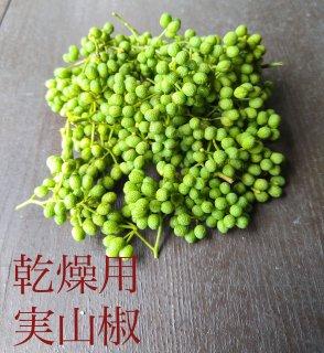 実山椒 / 生山椒    200g