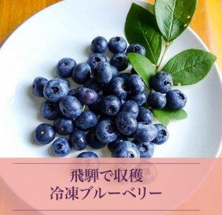 冷凍ブルーベリー   300g