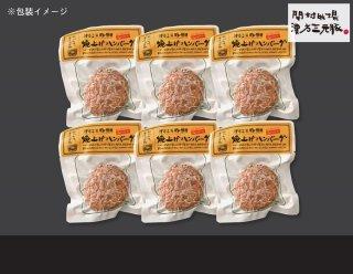 漢方三元豚 焼上げハンバーグセット(6食) 【PH-43】