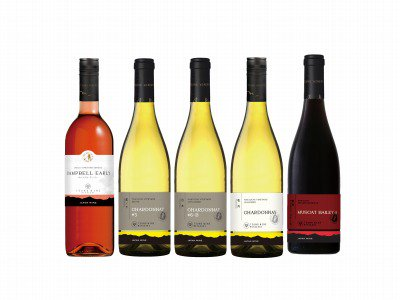 ジャパン・ワイン・チャレンジ2020(JWC)受賞ワインセット