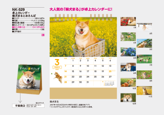 卓上カレンダー 柴犬まるとおさんぽ