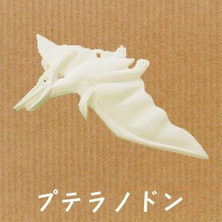 立体ぬり絵 まっしろ恐竜【プテラノドン】色塗りできますが、あえて真っ白なままエクステリアとしてもGOOD♪
