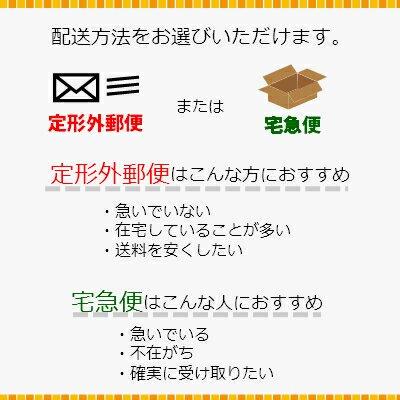 コサージュ クリア 円筒 ケース (透明)フックピン対応 耳つき【画像6】