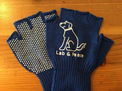 大人気!お散歩指なし手袋