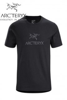<img class='new_mark_img1' src='https://img.shop-pro.jp/img/new/icons25.gif' style='border:none;display:inline;margin:0px;padding:0px;width:auto;' />ArcWord T-Shirt SS Mens BLACK HEATHER