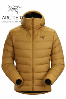 <img class='new_mark_img1' src='https://img.shop-pro.jp/img/new/icons5.gif' style='border:none;display:inline;margin:0px;padding:0px;width:auto;' />Thorium AR Hoody Mens 24K Invers