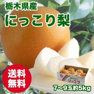 【びっくり大玉】栃木県産 にっこり梨【送料無料】