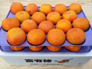 【甘柿の王様】お買い得 愛媛県産 富有柿 36〜42個【送料無料】
