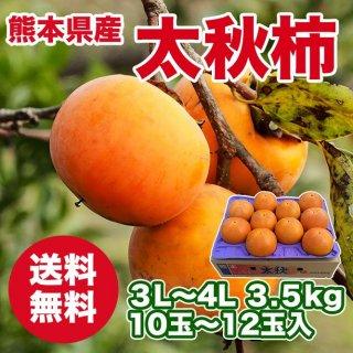 【極甘】熊本県産 太秋柿【送料無料】