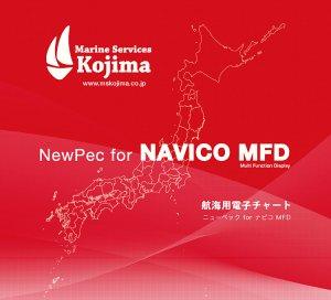 420587<br>NEWPEC 拡大海底地形データ