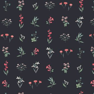 PIC-29457 Botanical Study Dark -Picturesque コットン100%
