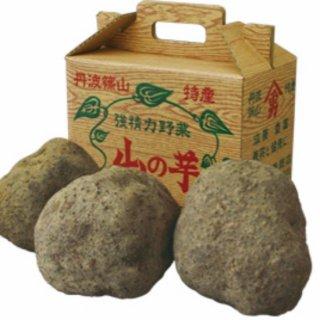 丹波篠山山の芋 特秀品【河南勇商店】