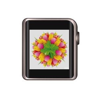 SHANLING デジタルオーディオプレーヤー ハイレゾ対応/Bluetooth/aptX/LDAC/タッチスクリーン/専用レザーケース同梱 チタニウムグレー M0 GY set