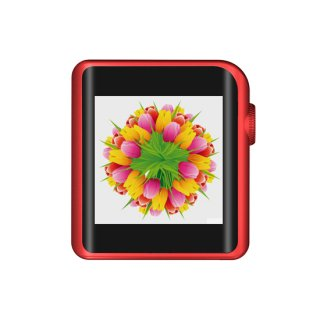 SHANLING デジタルオーディオプレーヤー ハイレゾ対応/Bluetooth/aptX/LDAC/タッチスクリーン/専用レザーケース同梱 レッド M0 RD set