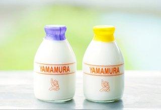 ☆お得なセット☆ 山村牛乳・濃厚乳 500mlビンセット