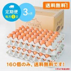 【毎月1日に3ヶ月間お届け】栄味卵(160個)