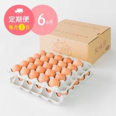 【毎月1日に6ヶ月間お届け】栄味卵(50個)