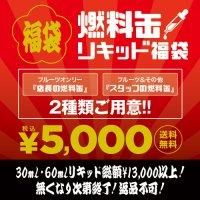 <img class='new_mark_img1' src='https://img.shop-pro.jp/img/new/icons25.gif' style='border:none;display:inline;margin:0px;padding:0px;width:auto;' />★福袋★VAPE JAPAN本店限定 燃料缶【フレーバーリキッド 電子タバコ 数量限定 お得】