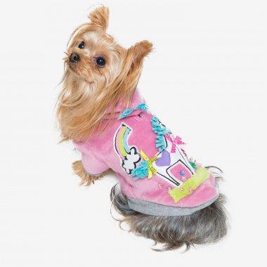 【S*ck Right!(サックライト)】Rainbow Pony Dog Foodie