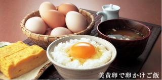 清水養鶏場 【美黄卵】 赤 10�入り