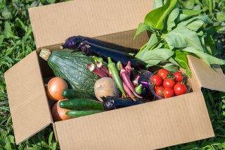 あなただけの野菜BOX