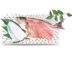 白身魚といかの刺身(わさび・ケン付き)