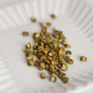 干山椒 (業務用1kg)