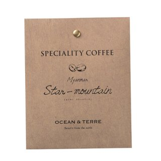 Speciality Coffee 01 ミャンマー(A154)