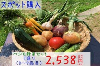 ベジモ野菜セット【スポット購入】1盛り 送料無料!