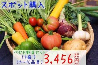 ベジモ野菜セット【スポット購入】1.5盛り 送料無料!