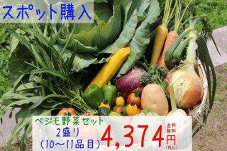 ベジモ野菜セット【スポット購入】2盛り 送料無料!