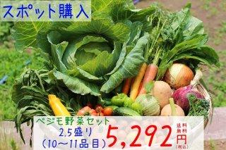ベジモ野菜セット【スポット購入】2.5盛り 送料無料!