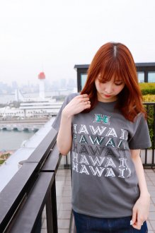 <img class='new_mark_img1' src='https://img.shop-pro.jp/img/new/icons30.gif' style='border:none;display:inline;margin:0px;padding:0px;width:auto;' />ハワイ大学 Tシャツ