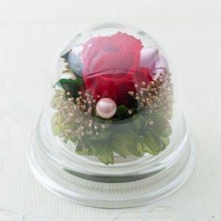バラのアクリルプチドーム【赤】