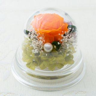 バラのアクリルプチドーム【オレンジ】