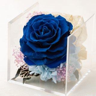 キューブボックスのローズメリア ブルー