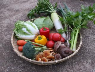 注文後収穫 野菜セット【大】