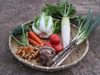 注文後収穫 野菜セット【中】