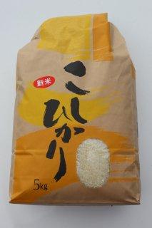 令和元年9月収穫  【新米】 コシヒカリ 5kg入り