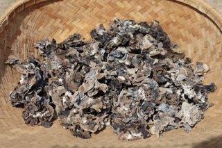 【業務用】干しキクラゲ 1kg 令和元年10月収穫 国産 自家栽培