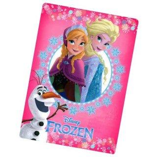 ディズニー アナと雪の女王 下敷きB DISNEY