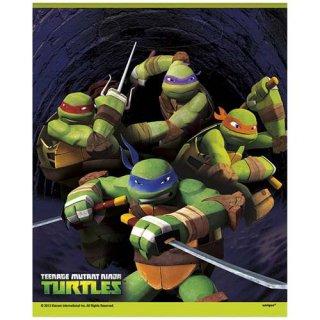 ミュータント・タートルズ ルートバッグ トリートサック TMNT TURTLES