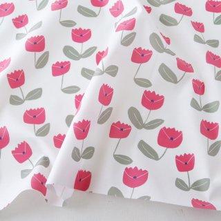 バンザイの花(ピンク)