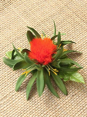 ミニレフアヘアクリップ(オレンジ)