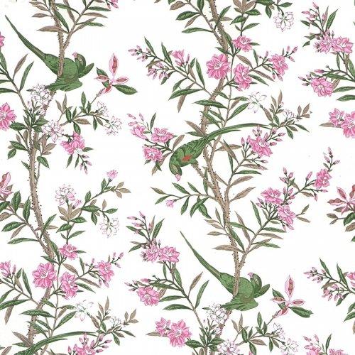 フランス生地 サテン コットン100% オウムプリント 《オウム》 ピンク & グリーン