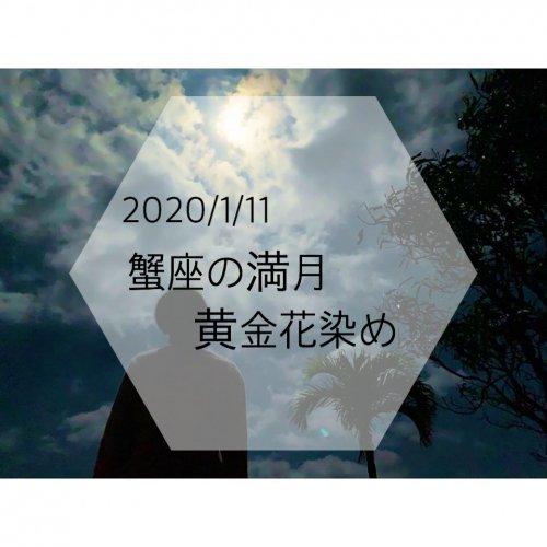 【女性用】蟹座の満月/黄金花染ふんてぃ