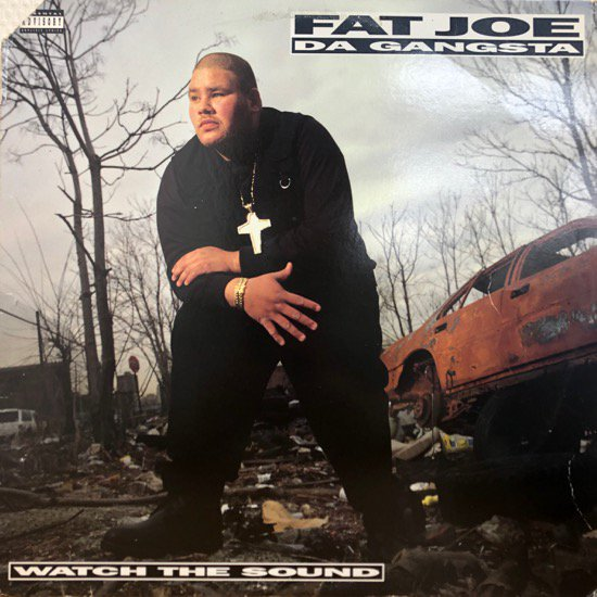 Fat Joe Da Gangsta / Watch The Sound