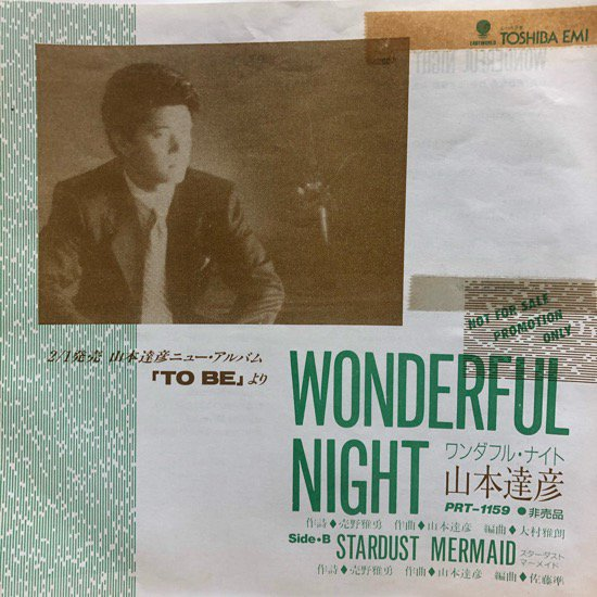 <img class='new_mark_img1' src='//img.shop-pro.jp/img/new/icons1.gif' style='border:none;display:inline;margin:0px;padding:0px;width:auto;' />山本達彦 / WONDERFUL NIGHT / STARDUST MERMAID ( Promo Only )